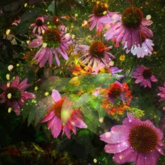 Brandy Leach - Artist